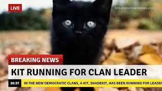 Funny Warrior Cat Memes 3